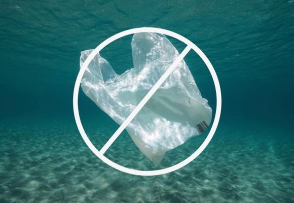 Día Libre de Bolsas de Plástico